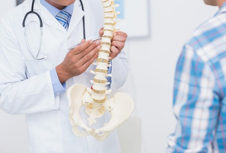 A Chiropractor in Oak Brook IL showing a model of a spine