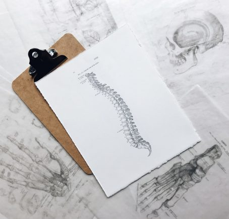 Darien Chiropractic Care